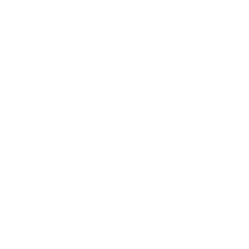 Icon of a lightning bolt encircled by with two semi-circular arrows